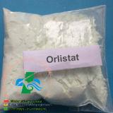 Perdita grassa Orlistat farmaceutico di Orlistat per il peso CAS di perdita: 96829-58-2