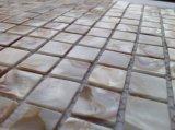 網のモザイクの白い淡水のシェル25*25