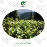 Migliore polvere organica di vendita del tè verde di Matcha di alta qualità