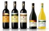 De professionele Etiketten van de druk30ml Fles met Lage Prijs