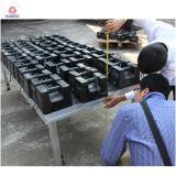 L'étape en aluminium assemblent vite l'étape TUV de contre-plaqué d'étape reconnue