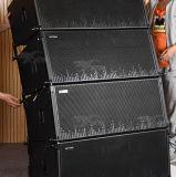 Dual a linha engrenagem audio de 12 polegadas do sistema de som da disposição PRO