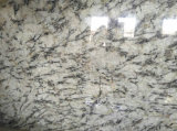 Losas de granito blanco Orion&Mosaicos pisos de granito&Albañilería