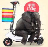 بالجملة [هرلي] أسلوب رخيصة كهربائيّة درّاجة ناريّة [سكوتر]