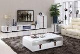 Tabella moderna di Coffce della Tabella di estremità della mobilia domestica (CJ-190A)