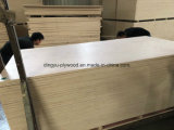 Los materiales de construcción pino/abedul/Álamos/ Contrachapado comercial