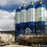 Het Project van de Bouw van de Verkoop van de Levering van China de Apparatuur van de Installatie van het Cement van de Silo van 100 Ton