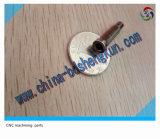 Для изготовителей оборудования с ЧПУ из нержавеющей стали для обработки винт и гайка