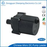 pompe de traitement des eaux de C.C de 12V 24V mini