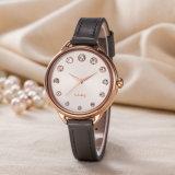Montre-bracelet occasionnelle classique de vente chaude de mode de femme de cadeau (Wy-128C)