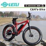 재력 En15194를 가진 설치된 모터 뚱뚱한 전기 자전거