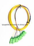 Schakelaar 12 de Vlecht Sc/APC G652D LSZH van de Vezel van de vezel Optische van de Bundel van de Kern