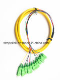 Оптоволоконный оптоволоконный соединитель Patchcord 12 сердечника хвост Sc/ПОСЛЕ ЗАМКА ЗАЖИГАНИЯ G652D LSZH