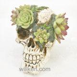 새로운 Halloween 장식 고품질 수지 앙티크 두개골 헤드