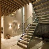 실내 나무로 되는 보행 똑바른 계단
