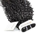 Malaysisches lockiges unverarbeitetes Jungfrau-Haar für Salon (Grad 9A)