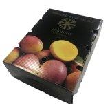 高品質のボックスを包む強さによってリサイクルされるマンゴ