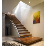 Il legno solido antiscorrimento ha usato il disegno diritto della scala con l'inferriata del metallo