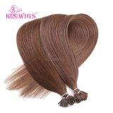 K.S 가발 색깔 #6 Virgin Remy 사람의 모발 연장 나는 머리를 기울인다