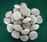 Landscaping를 위한 크기 2-3cm /3-5cm /5-8cm Natural White River Pebble Stone