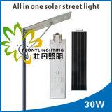 IP65工場価格! ! 30Wは1つの太陽LEDの街灯のすべてを統合した! ! 人体の赤外線誘導! ! 屋外の庭か壁または中庭または通りまたはハイウェイまたは芝生李