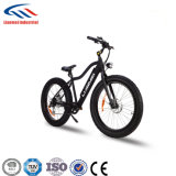 درّاجة سمين مع [س]