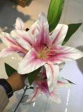장식적인 꽃 백합 훈장 가짜 꽃이 인공적인 결혼식 꽃다발에 의하여 집으로 돌아온다