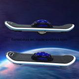 1개의 바퀴 균형 스쿠터 자전거 Hoverboard E 바퀴 스케이트보드