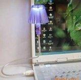 Свет крышки RUSB с комплектом Shadeattan светильника