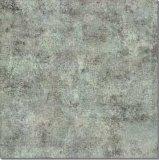 FrCeramics en de Vloer van het Porselein betegelen (ALQ6022) ont Comité - 3