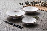 """100%Melamine Dinnerware- het Vaatwerk van de Reeks van """"Celadon"""" (A71)"""