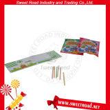 Het grappige Stuk speelgoed van het Raadsel van de Villa met het Suikergoed van het Poeder