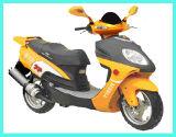 Motorbike (HLG250T-6)