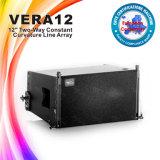 Vera12 de Model Houten Spreker van het Systeem van de Doos Correcte