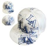 3D Embroidery Flat 테두리 Cap (JRN009)