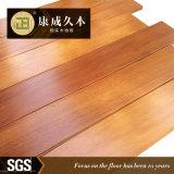 La resistencia natural a las termitas de parquet de madera y pisos de madera (MI-03)