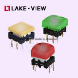 Interruttore illuminato di tatto con le opzioni multiple di colore del LED