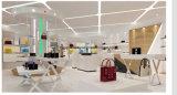 Стеллаж для выставки товаров для индикации магазина сумки повелительниц, нержавеющего шкафа