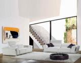 La mobilia della mobilia del cuoio di Bauhaus & del sofà di stile di Bauhaus (TG-8010)