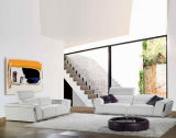 Die bauhaus-Leder-Möbel-u. Bauhaus-Art-Sofa-Möbel (TG-8010)