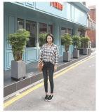 2017 새로운 편리한 Lady′ S 형식 여름 청바지