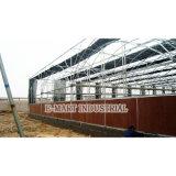 Парник, пусковая площадка промышленной мастерской фабрики влажная