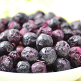 Blueberry Vacuum Freeze Dryer / Blueberry Freezing and Drying Machine
