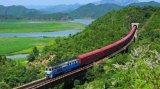 Часть поезда муфты поезда стали отливки высокого качества запасная
