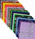 La stampa promozionale Testa-Porta il Bandana su ordinazione della sciarpa (B-NF20F19006)
