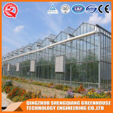 Дом Tempered стекла Multi-Пяди земледелия Китая зеленая