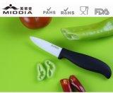 Кухня оборудует 3 дюймов керамический миниый обстрагывать/шелушения нож