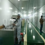 Riga di vernice automatica del rivestimento di colore del robot per il casco