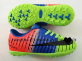Cheap Price Hot Selling Football / Soccer Sports Shoes