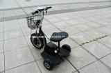 350 W y 500W triciclo eléctrico de bastidor de acero, los adultos de 3 ruedas Bicicleta eléctrica